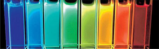 図1 POLARIC™の蛍光色変化